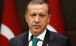 اردوغان تصرف