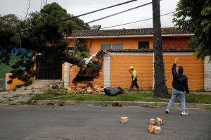 سقوط درخت بر روی کابل های برق در السالوادور