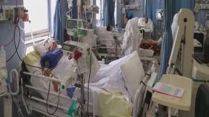 مرگ ۳۰۸۳  نفر در فارس بر اثر ابتلا به کروناویروس