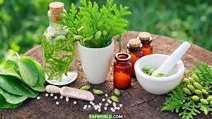 ۲۰ گونه شاخص از گیاهان دارویی کردستان تجاریسازی میشود