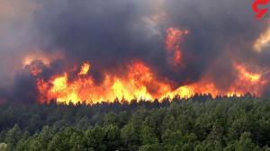 پرونده آتش سوزی جنگل ها در کمیسیون اصل  ۹۰ مجلس