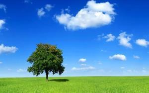 ثبت ۳۰۶ روز هوای پاک در کهگیلویه و بویراحمد