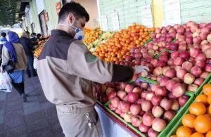ثبات قیمت در بازار میوههای پر مصرف