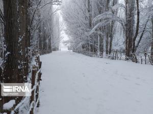 نخستین برف زمستانی مهاباد را سفیدپوش کرد