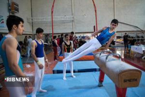 دعوت ورزشکاران کردستانی به اردوی تیم ملی ژیمناستیک
