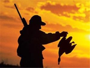فضای مجازی رازهای شکارچی بیرحم در سیستانوبلوچستان را برملا کرد