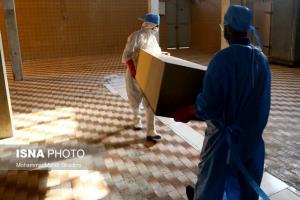 فوت ۳ بیمار مبتلا به کرونا در البرز