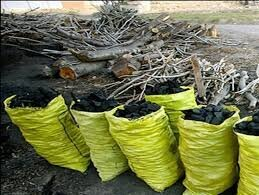 جریمه ۳ میلیاردی قاچاقچی ۳۳۶ کیلوگرم زغال در کهگیلویه