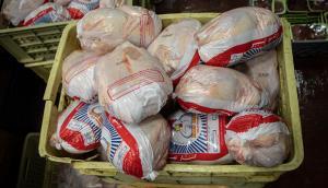 ۱۱۵ فقره پرونده تخلف صنفی مرغ در آذربایجانغربی تشکیل شد
