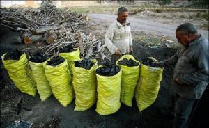 کشف ۱۶ کوره زغال در روستای موگر شهرستان بویراحمد