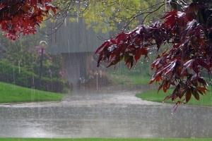 طی چند روز آینده در کدام مناطق کشور باران میبارد؟