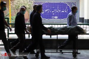 عکس/ تراژدی پیک چهارم کرونا در تهران