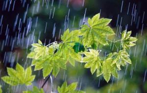 بارش باران و رعدوبرق زنجان را فرا میگیرد