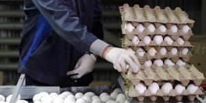 کشف ۴۳۲ هزار عدد تخم مرغ خارج از شبکه توزیع در سرخه