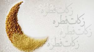 مدیرکل کمیته امداد: جمعآوری زکات فطریه در بوشهر حضوری و مجازی انجام میشود