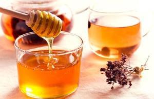 تولید سالانه ۴۴۰ تن عسل در ساری
