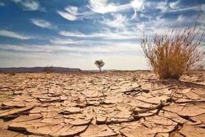 ممنوعیت انتقال آب برای کشت محصولات آبدوست