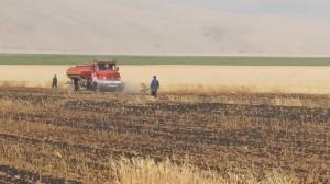 ۸ هکتار از مزارع گندم پلدختر در آتش سوخت