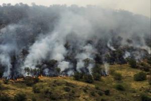 نقاط بحرانی جنگلهای ارسباران در مخاطرات حریق شناسایی شد
