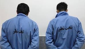 دستگیری ۲ نفر از عاملان پرچمگردانی گروههای تروریستی در ماهشهر