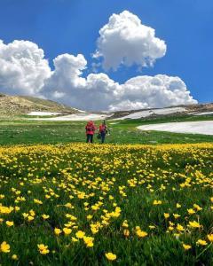 عکس/ منظرهای حیرت انگیز از مازندران