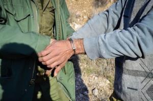 ۲ کارگر آلومینای جاجرم به اتهام شکار بزغاله وحشی دستگیر شدند