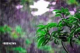 هوای برخی مناطق کردستان بارانی میشود
