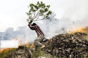 منابع طبیعی کردستان درباره آتشسوزی مراتع و جنگلها هشدار داد