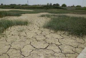 لبهای خشکیدهی زمین