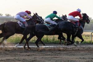 هفته بیستم کورس اسبدوانی گنبد کاووس برگزار شد
