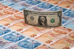 دستگیری قاچاقچی دلار در شهرضا