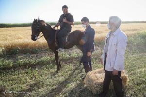 عکس/ دیدار سعید جلیلی با جمعی از روستاییان شهر ری