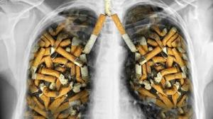 ۱۲ سرطان کشنده در کمین مصرفکنندگان دخانیات است