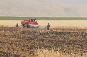 ۲۰ هکتار از مراتع و مزارع شهرستان مهران طعمه حریق شد