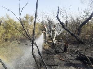 معرفی متهمان آتشسوزی پارکهای ملی کرخه و دز به دادگاه