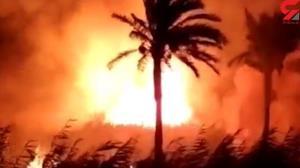 آتشسوزی در نخلستانهای ۳ روستای آبادان