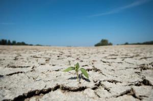 کاهش ۴۶ درصدی بارندگیهای استان سمنان