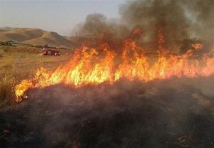 ۶۵ هکتار از مزارع کشاورزی در اسلام آبادغرب و دالاهو دچار حریق شد