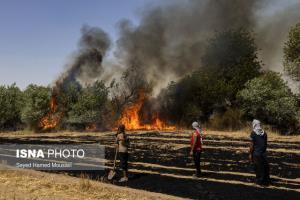 اعزام امکانات مهار حریق جنگلها و مراتع به خوزستان