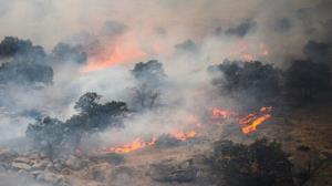 آتشسوزی در سبزکوه بهسرعت مهار شد