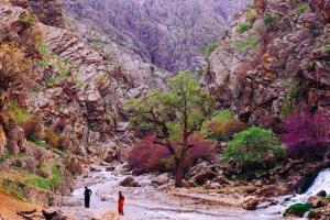 برند گردشگری کردستان بهزودی رونمایی میشود