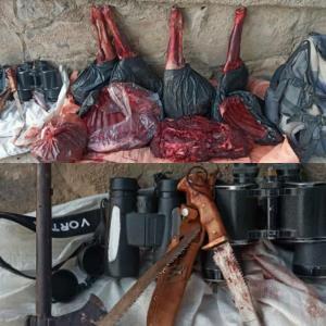 دستگیری شکارچیان غیرمجاز قوچ وحشی در نیشابور
