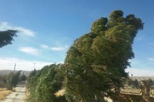 وزش باد و خیزش گرد و خاک چهارمحال و بختیاری را فرا میگیرد