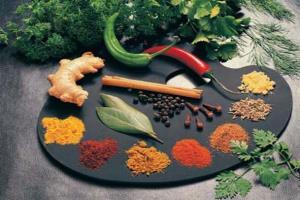 شناسایی ۴۵۰ گونه گیاه دارویی در آذربایجانشرقی