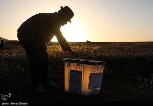 عکس/ زیباترین تصویر از انتخابات ۱۴۰۰ در اهر