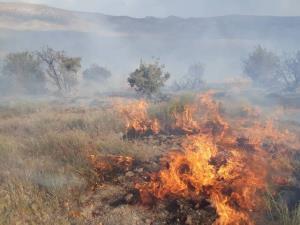 احتمال آتشسوزی در مراتع و جنگلهای آذربایجانغربی