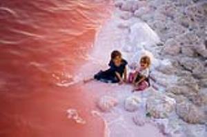 عکس/ سرخی آب دریاچه ارومیه