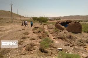 بارندگی ۲ هزار میلیارد ریال به کشاورزی چرام خسارت زد
