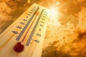 موج جدید گرما در راه استان بوشهر