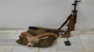 شکارچی غیربومی در دام ماموران حفاظت محیطزیست یزد